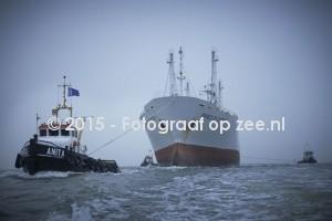 https://www.fotograafopzee.nl/media/images/intro/anita_0464.jpg